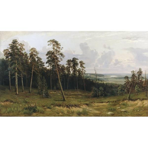 Шишкин №16