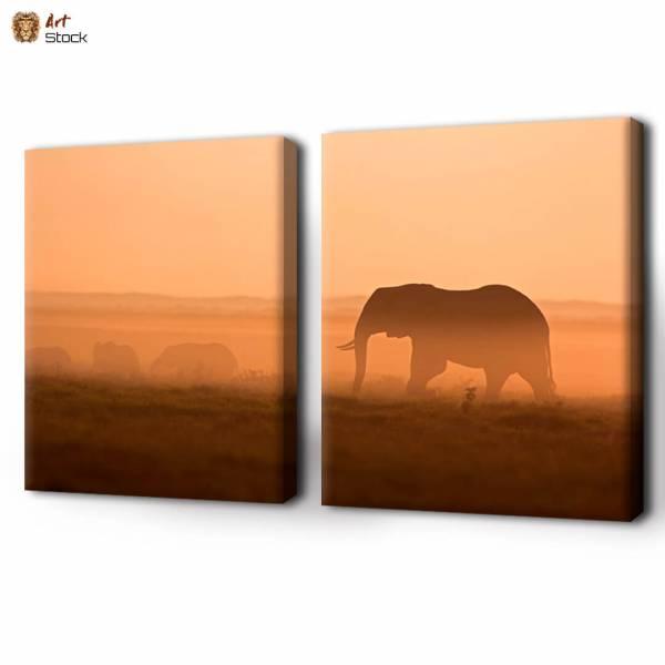 Слон идущий